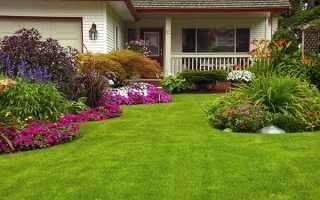 Добриво для газону — навесні, добриво дженджик, ніж удобрювати, відео
