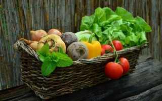 17 ексклюзивних сортів овочів від компанії «Ваше Господарство»