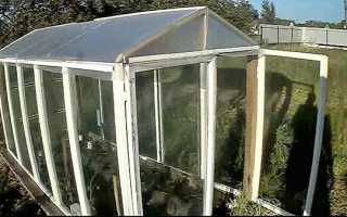 Парник зі старих віконних рам — використовуємо для вирощування розсади, відео