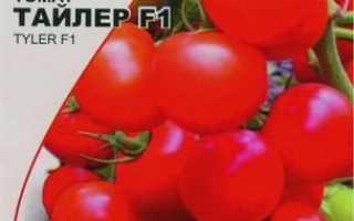 Томат Тайлер F1: опис сорту, його врожайність, рекомендації по вирощуванню