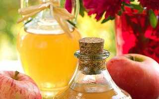 Яблучний оцет — користь і шкода для здоров'я, застосування в лікувальних цілях, як приймати, відео