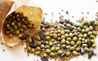 Скарифікація насіння в домашніх умовах, як проводити, відео