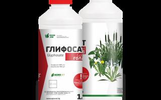 Гербіцид «гліфосат» — інструкція із застосування