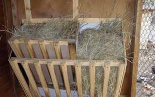Годівниця для кіз і козенят — вибір конструкції, матеріалу, процес виготовлення, відео