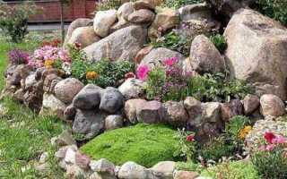 Що таке альпінарій, як його зробити, то каміння використовувати, відео