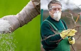 Препарат Карбамід — стимуляція росту рослин, боротьба зі шкідниками, відео