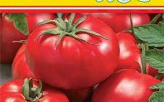 Кращі сорти томатів для Сибіру в теплиці і для відкритого грунту з фото і описом Відгуки