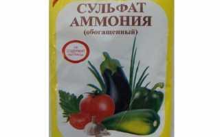 Застосування сульфату амонію при вирощуванні суниці, відео