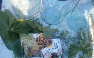 Рецепт асорті: огірки з помідорами мариновані на зиму з покроковими фото