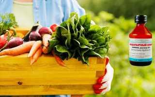 Застосування нашатирного спирту в садівництві, дозування, відео