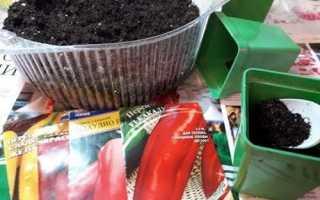 Як садити перець на розсаду: підготовка насіння і грунту, посів, відео