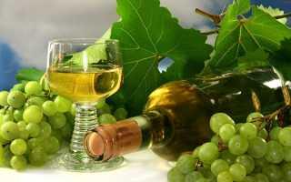 Шампанське з виноградного листя в домашніх умовах, рецепт приготування ігристого вина, відео