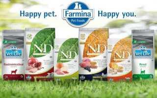Корм Фарміна для собак і кішок — огляд продукції, відео