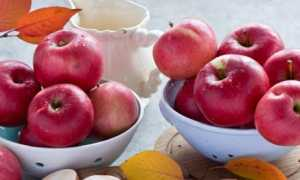 Повидло з яблук на зиму: кращі рецепти