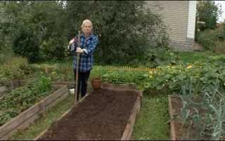 Як можна заробити на городі, що вирощувати для продажу, відео