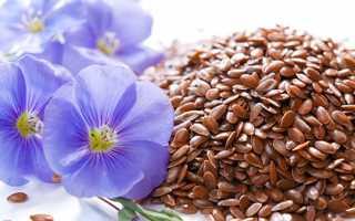 Насіння льону — користь і шкода, як приймати для схуднення, очищення організму, відео