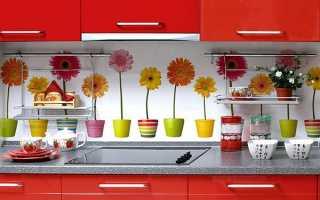 Фартух для кухні на робочу зону, варіанти дизайну, відео