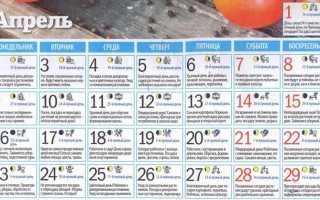 Місячний посівний календар на квітень 2018 роки для садівників, городників, квітникарів