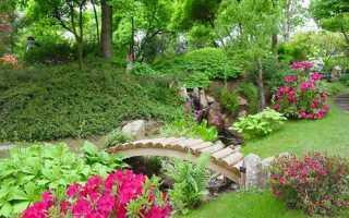 Десять нововведень в садівництві, які спростять життя дачника, відео