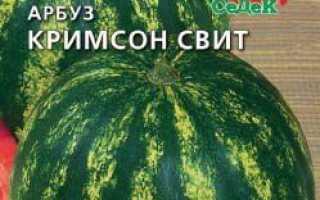 Коли садити кавуни на розсаду в 2019 році за місячним календарем Вирощування і догляд в Підмосков'ї, на Уралі, в Сибіру