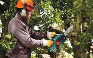 Електрична ланцюгова пила — яку вибрати для роботи в саду і на будівництві, відео