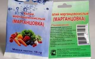 Марганцівка — порятунок для ваших рослин [правила підгодовування]