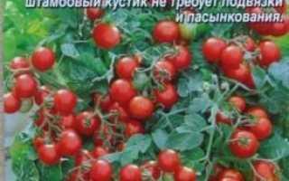 Томати Балконне диво: вирощування на підвіконні в домашніх умовах