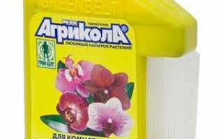 Добриво для орхідей і вітамінний коктейль, застосування цитокініновою пасти для цвітіння і зростання діток, відео