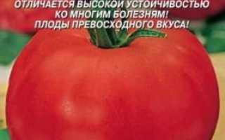 Томат Президент F1: характеристика і опис сорту, врожайність, рекомендації по вирощуванню