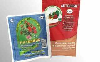 Застосування препарату Актеллік, області, спосіб, відео