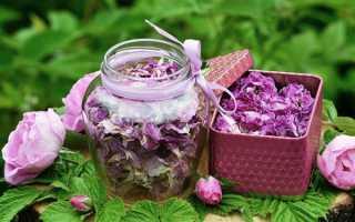 Корисні властивості троянди і протипоказання до застосування, приготування чаю, меду, настойки, відео