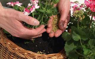 Комплексні добрива для квітів в гранулах, відео