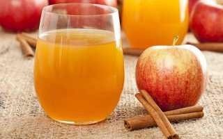 Яблучний сік в домашніх умовах без соковижималки, як зробити заготовку на зиму, відео