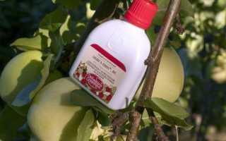 Абіга пік — інструкція із застосування для різних рослин, відео