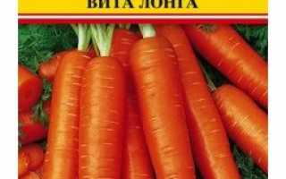 Морква Віта Лонга: опис сорту, рекомендації по вирощуванню, боротьбі з шкідниками і збору