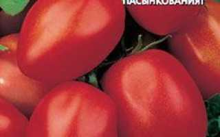 Томат засолювальними диво: характеристика і опис сорту, особливості вирощування