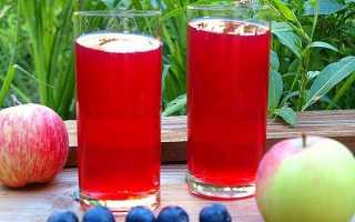 Компот з терну на зиму — рецепти приготування зі стерилізацією і без стерилізації, з додаванням яблук, відео