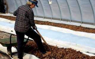 Добриво землі восени в теплиці, профілактичні заходи, відео