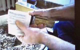 Стаканчики для розсади квітів з газети — відео