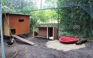 Будиночок для качок від Urban Coop Company