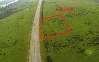 Гектар в метрах квадратних, скільки метрів в гектарі, як порахувати, відео