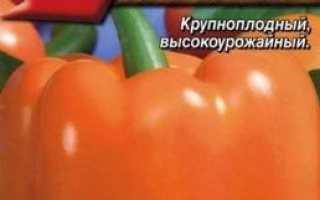 Солодкий болгарський перець: сорти з фото, назвою, описом