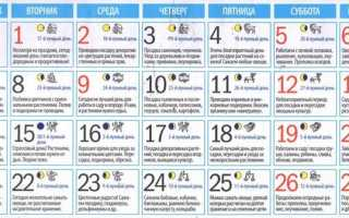 Місячний посівний календар на травень 2018 для садівників, городників, квітникарів
