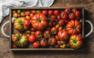 13 перевірених сортів томатів, які я рекомендую посадити. Опис і фото