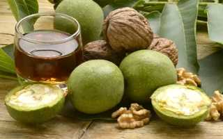 Настоянка зеленого волоського горіха на горілці, гасі, спирті, застосування проти паразитів, відео