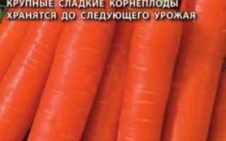 Морква Балтімор f1: опис сорту, рекомендації по вирощуванню та зберігання