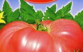 Томат Рожевий мед: характеристика і опис сорту, врожайність, поради агрономів по вирощуванню