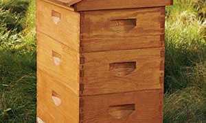 Вулики для бджіл — виготовлення своїми руками за кресленнями, як зробити рамки для бджіл, ціна, відео