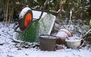 Листопад на дачних грядках — прибирання пізнього врожаю, підготовка грунту до зими, відео