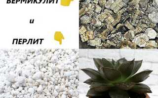 Чим відрізняється перліт від вермикуліту, застосування для квітів, відео